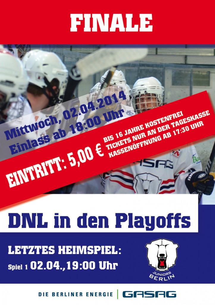 Plakat_DNLFinale2014
