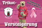 versteigerung_pink